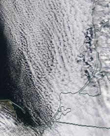 Спутниковый снимок Куршский и Калининградский заливы