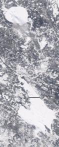 Спутниковый снимок  Рыбинского водохранилища и Белого озера 2021-02-19