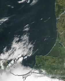 Спутниковый снимок  Куршский и Калининградский залив 2021-07-16