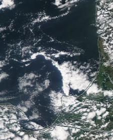 Спутниковый снимок  Куршский и Калининградский залив 2021-07-19