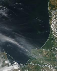 Спутниковый снимок  Куршский и Калининградский залив 2021-07-25