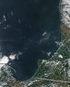 Спутниковый снимок  Куршский и Калининградский залив 2021-07-28